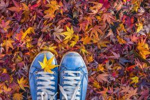 44295286-saison-d-automne-dans-les-chaussures-de-style-hipster